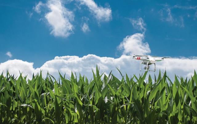 SMARTAGRO, el futuro de la agricultura